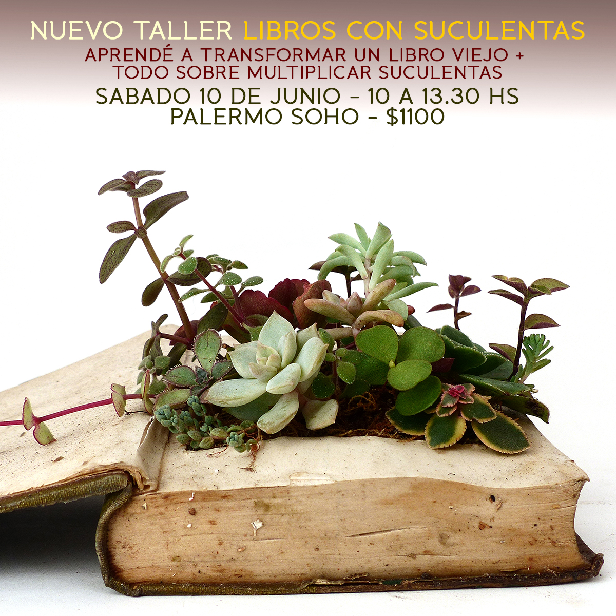 flyer LIBRO TALLER