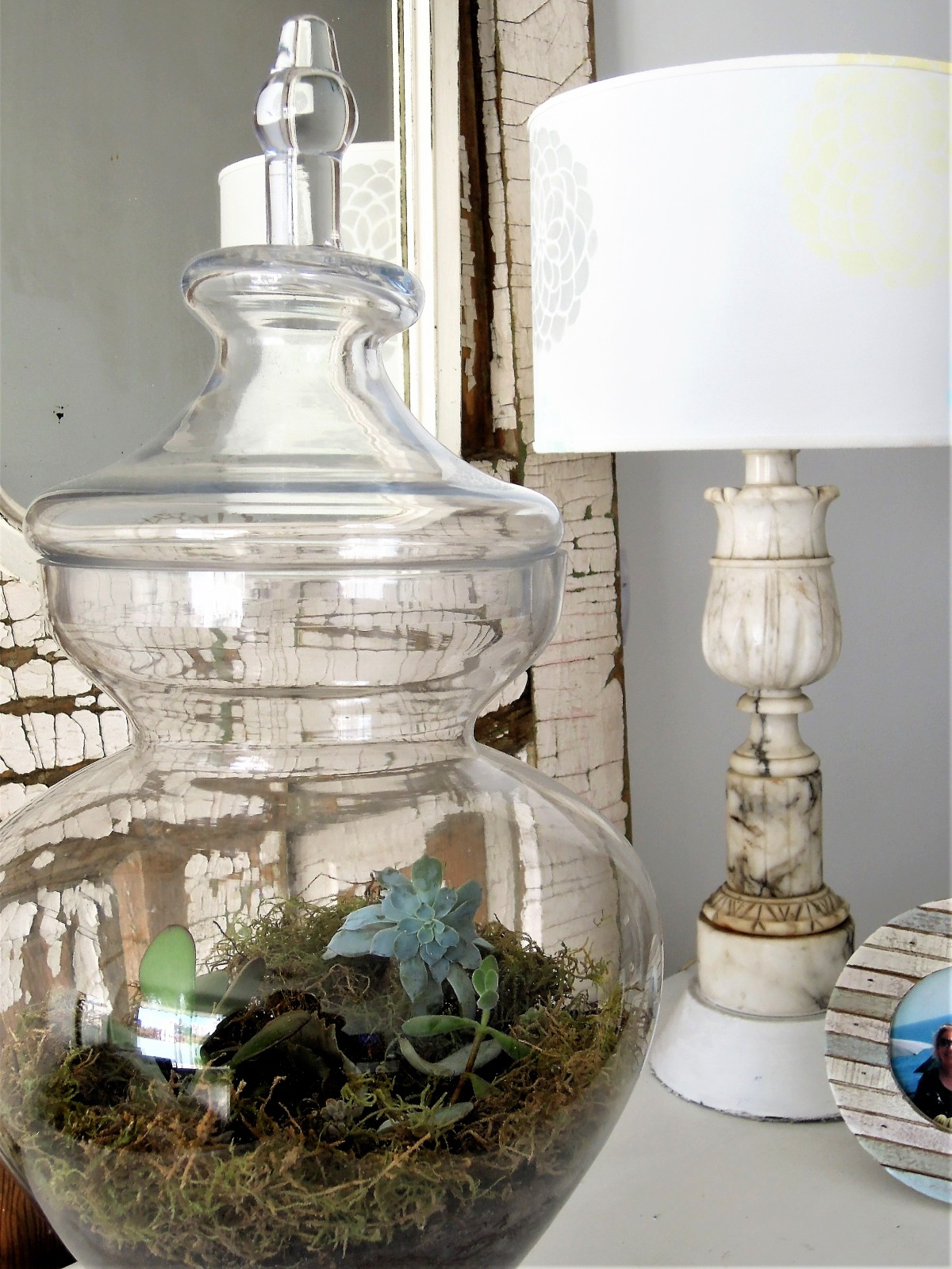 terrario, terrarium, idea, diy, glass